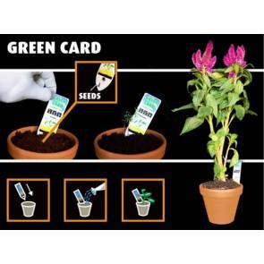 GreenCard Eco weggevertje bedrukken